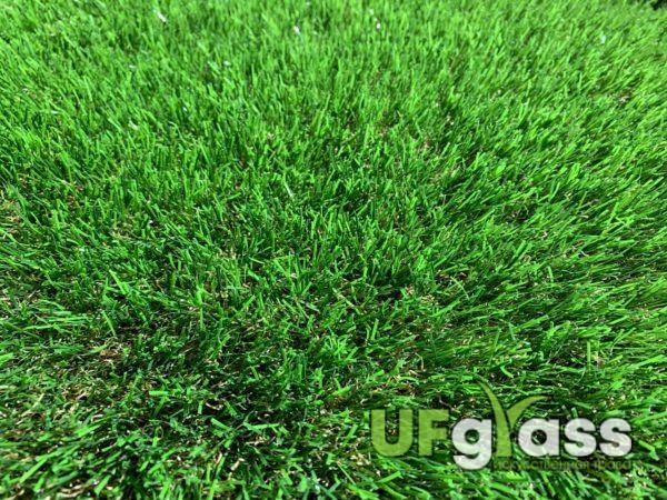 UF Grass Multi Color